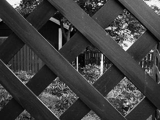 fence2_liten.jpg