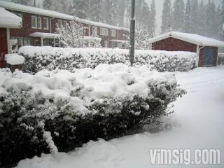 första snön för i år