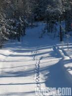 vacker näst intill orörd snö