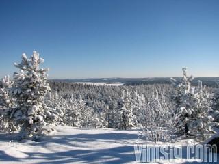 utsikt från spjärshälla, falu kommuns högsta punkt