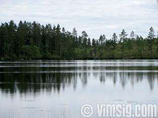 vackert vid sjön