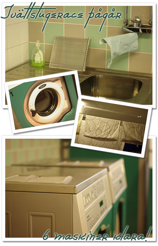 tvättstugerace