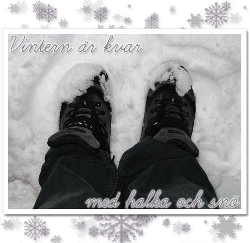 halka och snö