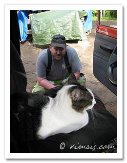 Mattias lockar motvillig katt