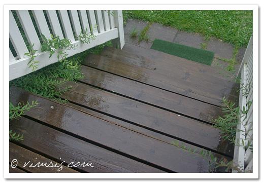 regnblöt trapp