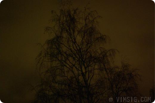 kuslig himmel med kusligt träd