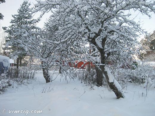 snön kommer