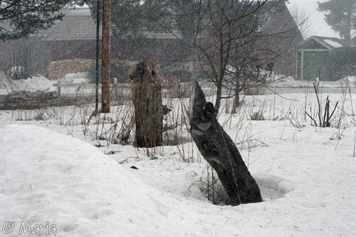 tillfällig snöstorm