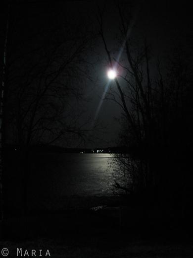 nattlig utsikt över sjön