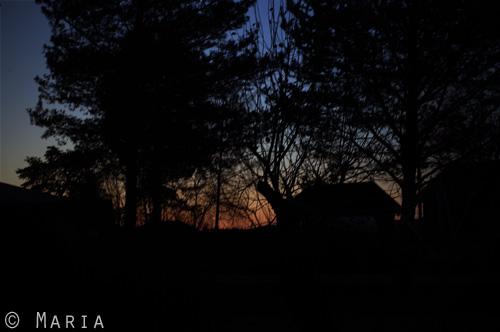 solnedgång från köksfönstret