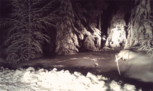 snö på en av infarterna till stugan